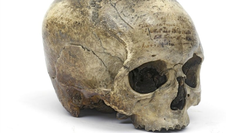 Skull of René Descartes