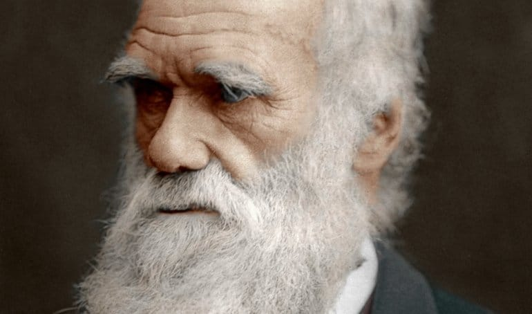 CharlesDarwin - Darwin, Evolution and Economics