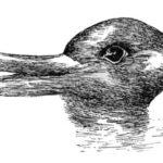 Understanding Ludwig Wittgenstein's Duck-Rabbit