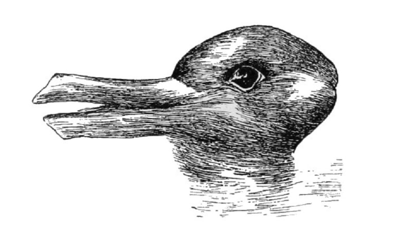 idea sized psm v54 d328 optical illusion of a duck or a rabbit head 1 - Understanding Ludwig Wittgenstein's Duck-Rabbit