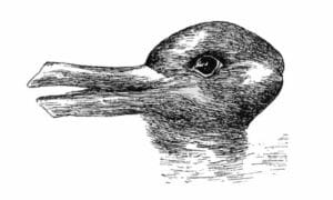 idea sized psm v54 d328 optical illusion of a duck or a rabbit head 300x180 - Understanding Ludwig Wittgenstein's Duck-Rabbit